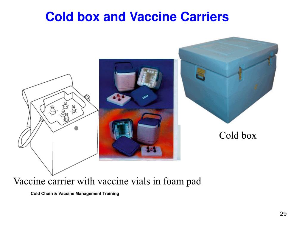Cold Chain & Vaccine Management Training