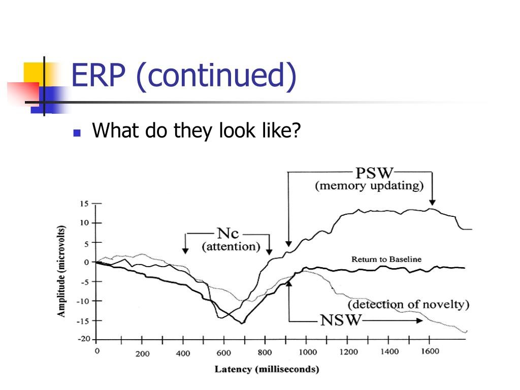 ERP (continued)