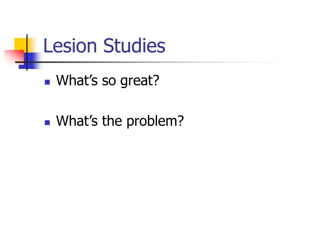 Lesion Studies