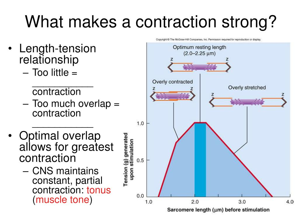 What makes a contraction strong?