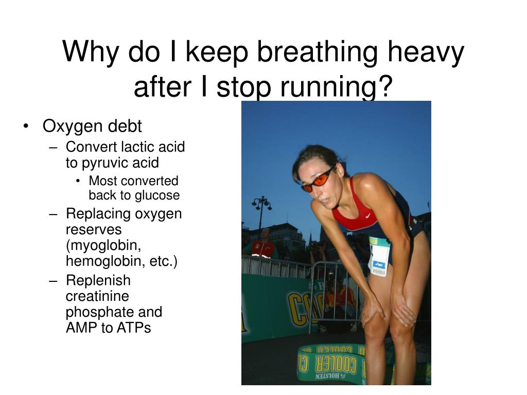 Why do I keep breathing heavy after I stop running?