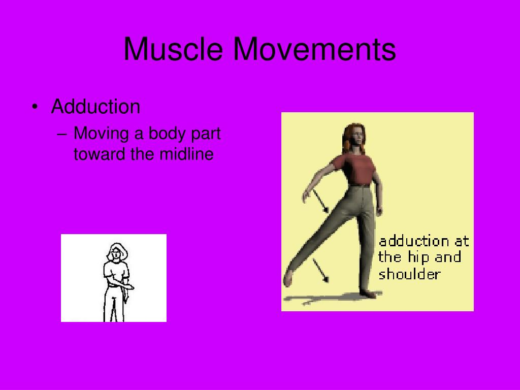 Muscle Movements