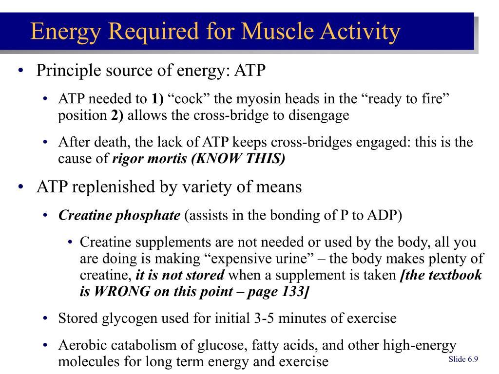 Principle source of energy: ATP