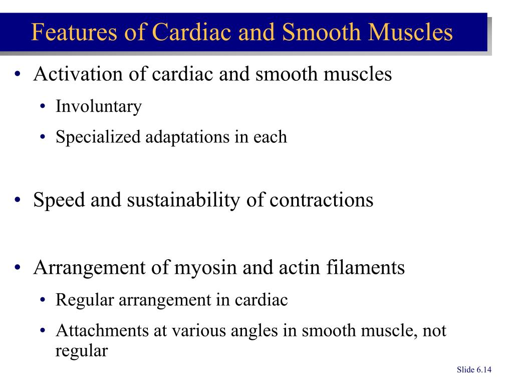 Activation of cardiac and smooth muscles