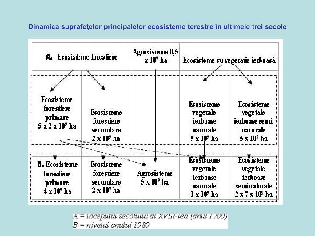 Dinamica suprafeţelor principalelor ecosisteme terestre în ultimele trei secole