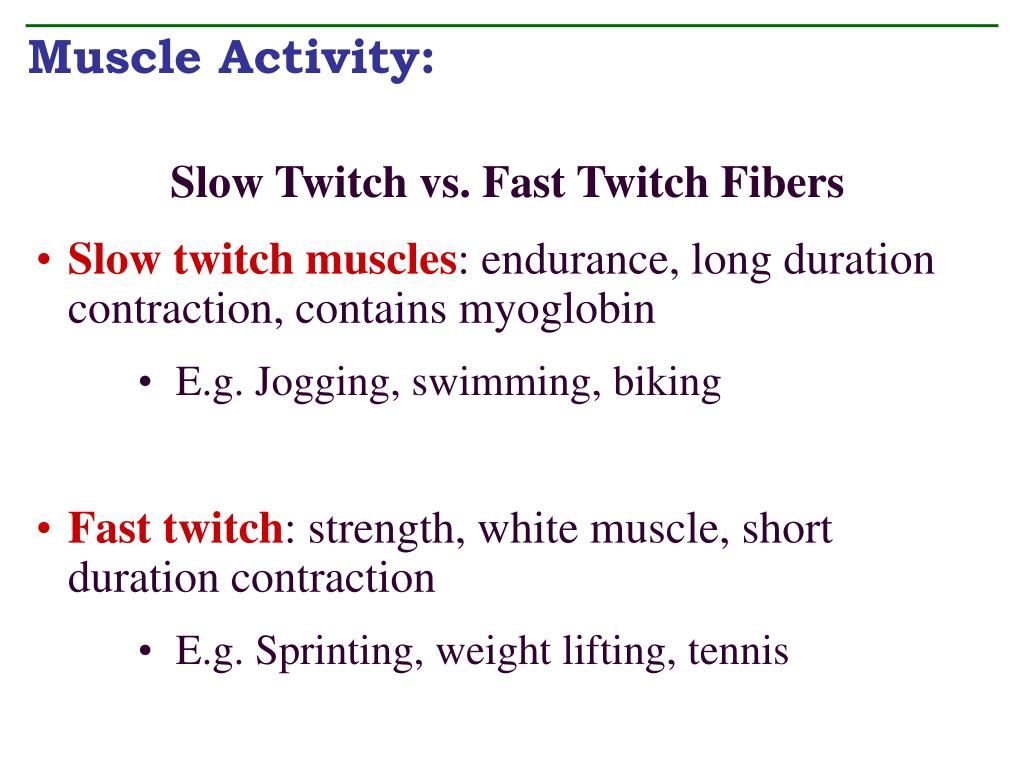 Muscle Activity: