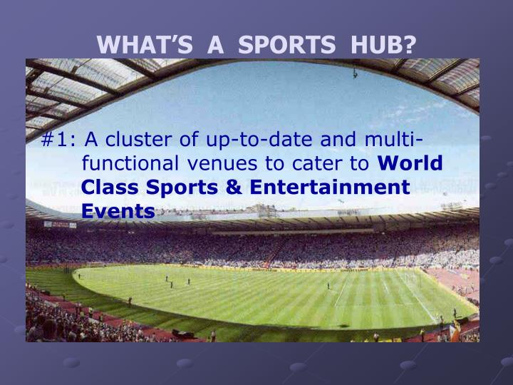 WHAT'S  A  SPORTS  HUB?