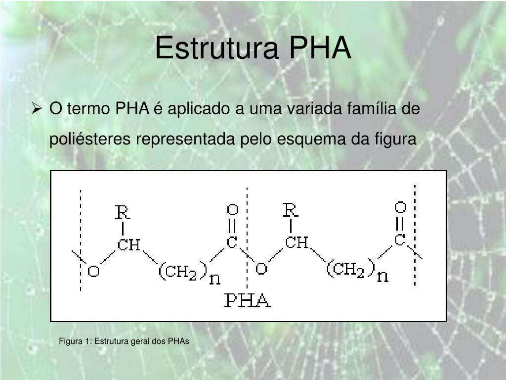 Estrutura PHA