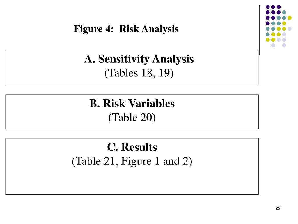 Figure 4:  Risk Analysis