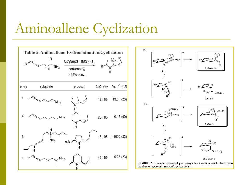 Aminoallene Cyclization