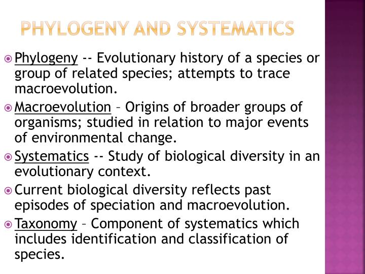 Phylogeny and systematics
