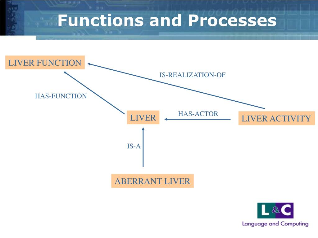 Functions and Processes