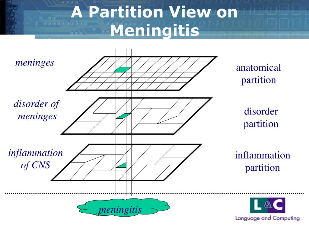 A Partition View on Meningitis