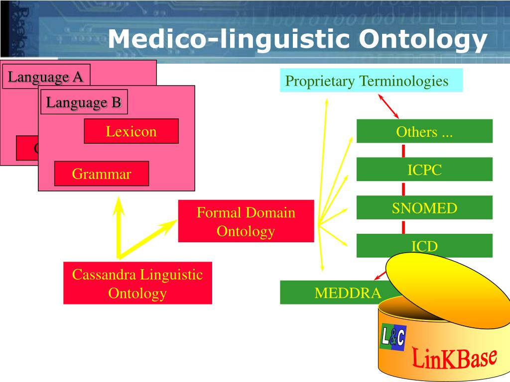 Language A