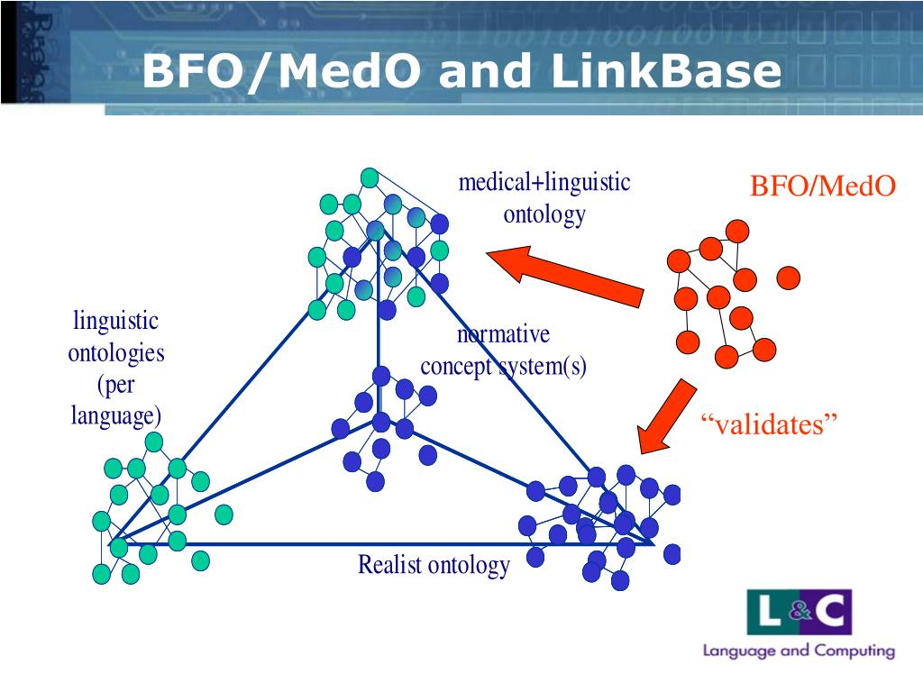 BFO/MedO and LinkBase