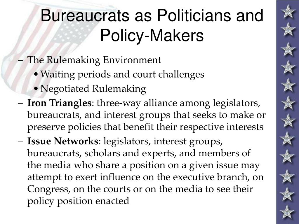 Bureaucrats as Politicians and Policy-Makers