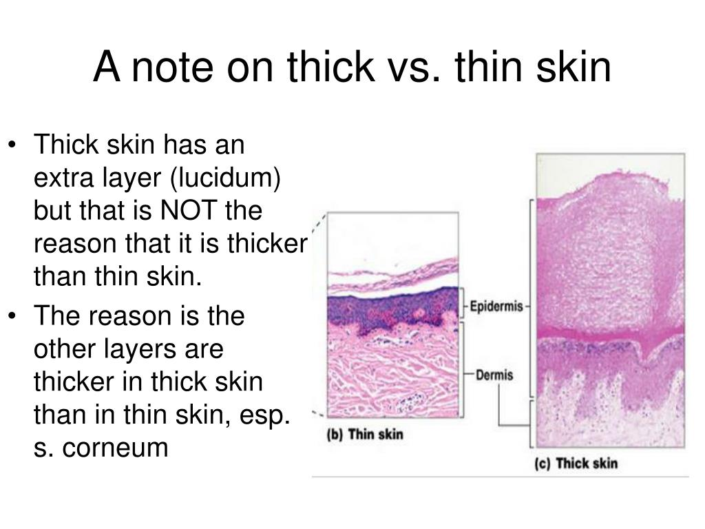 A note on thick vs. thin skin
