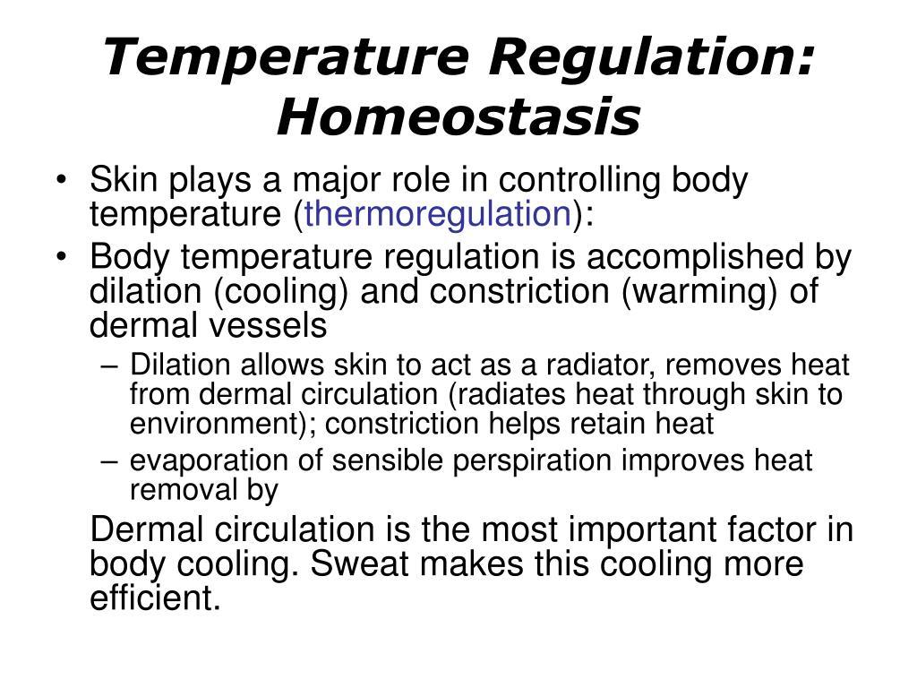 Temperature Regulation: Homeostasis