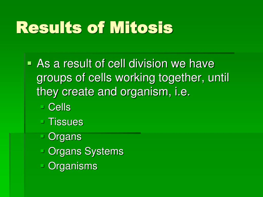Results of Mitosis