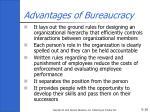 advantages of bureaucracy