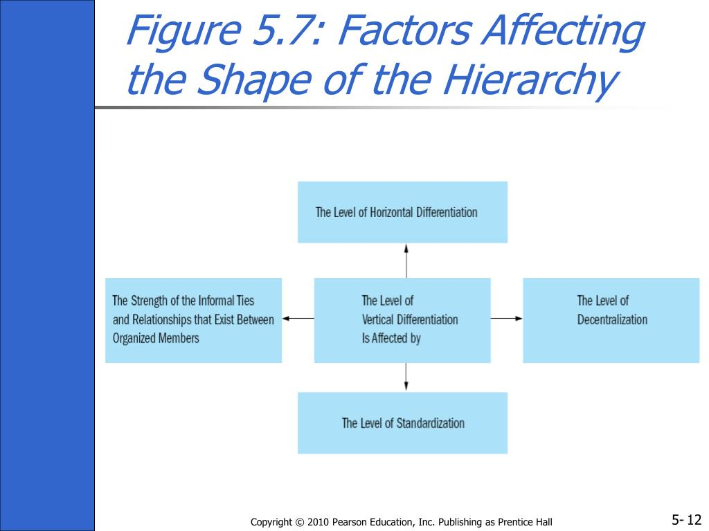 Figure 5.7: Factors Affecting the Shape of the Hierarchy