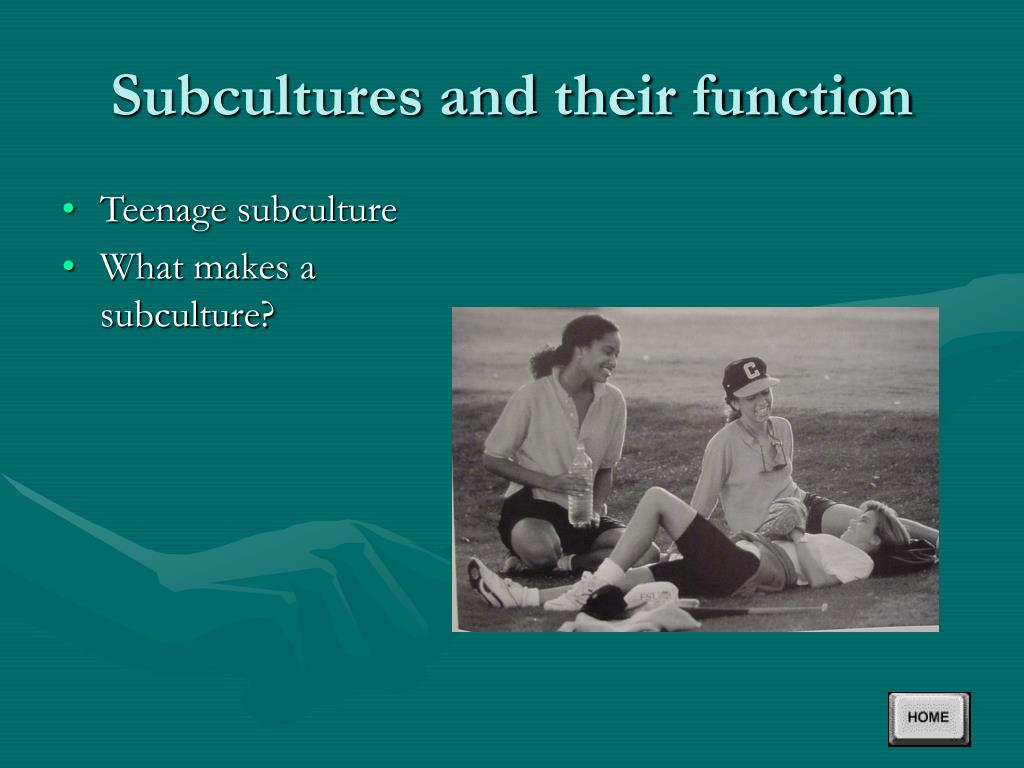 Subcultures and their function