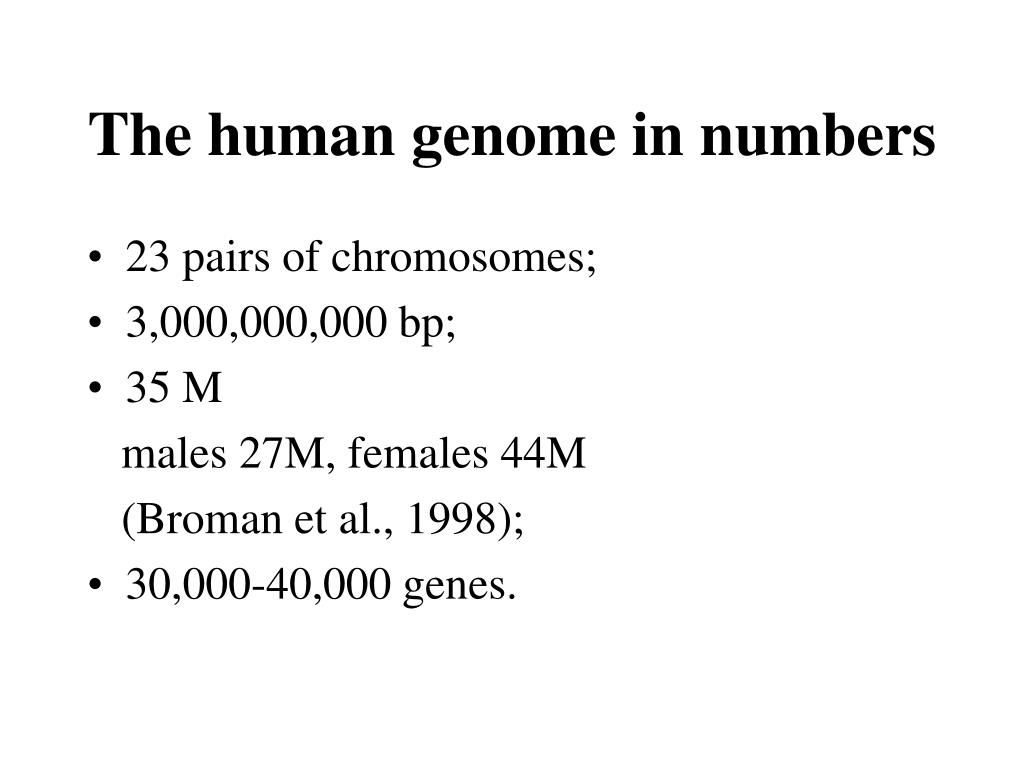 The human genome in numbers