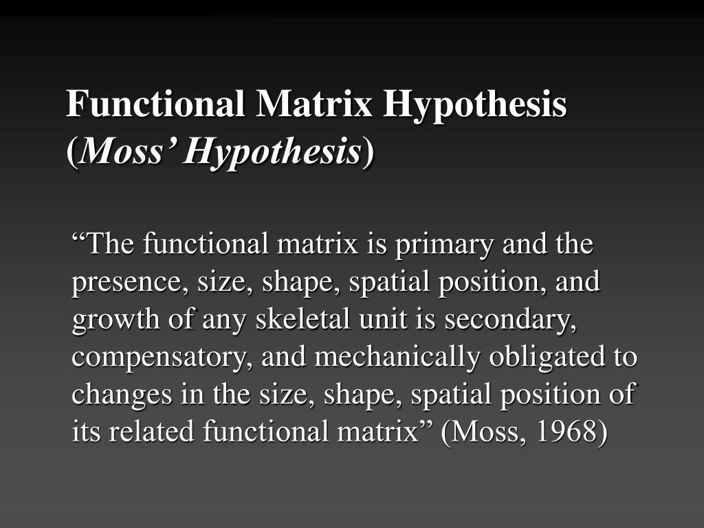 Functional Matrix Hypothesis