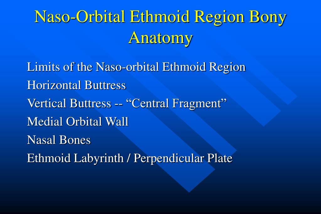 Naso-Orbital Ethmoid Region Bony Anatomy