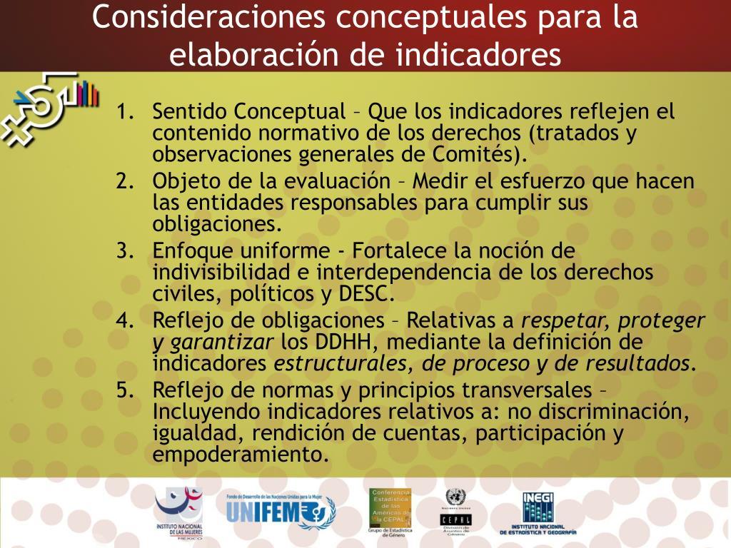 Consideraciones conceptuales para la elaboración de indicadores