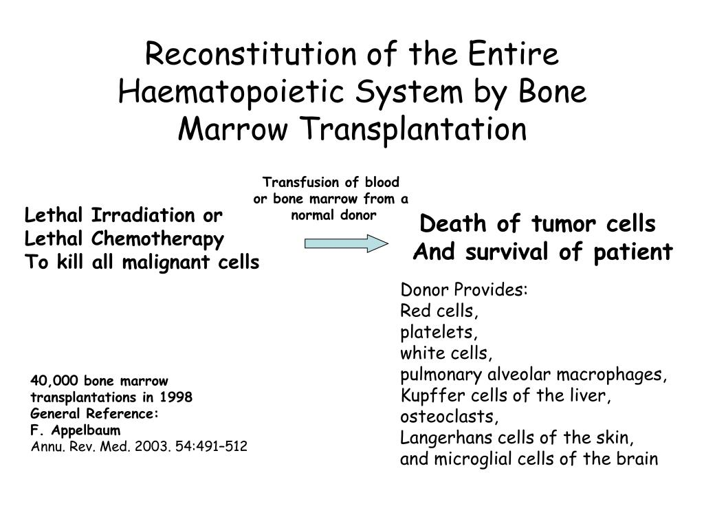 Reconstitution of the Entire Haematopoietic System by Bone Marrow Transplantation