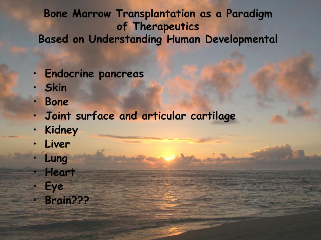 Bone Marrow Transplantation as a Paradigm