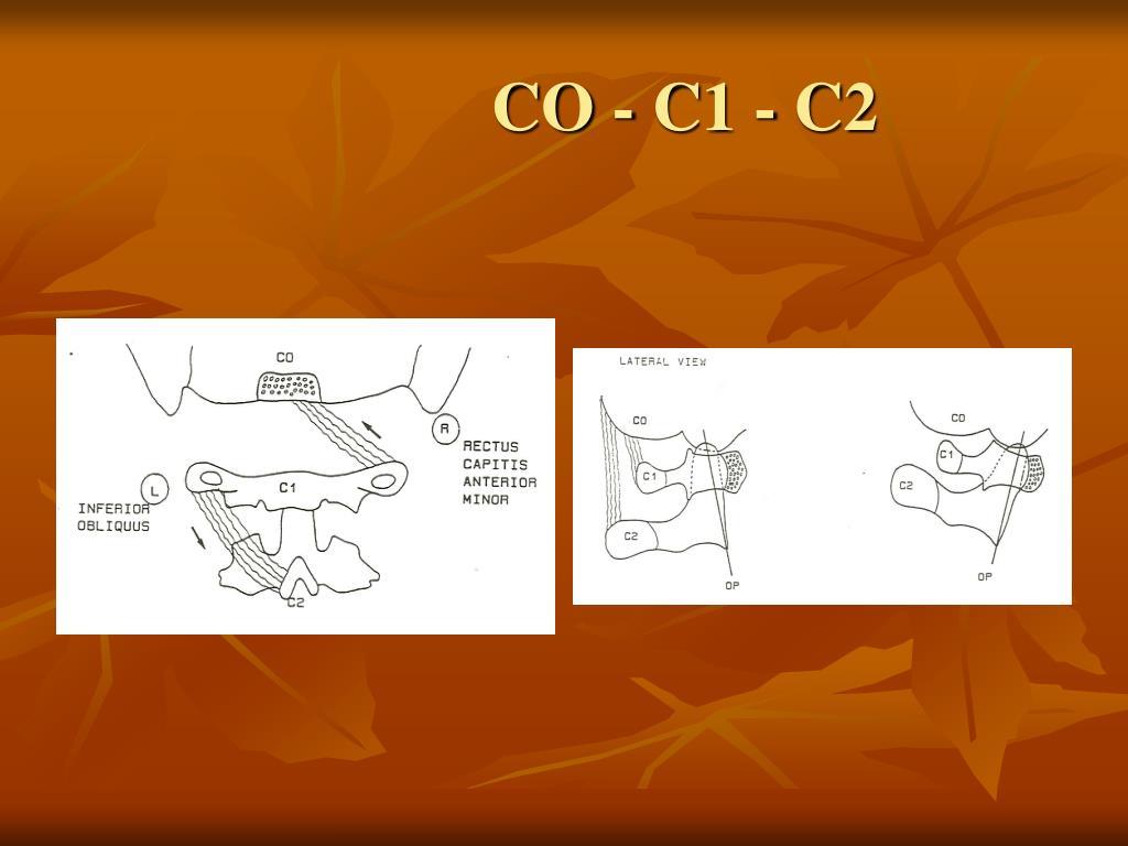 CO - C1 - C2