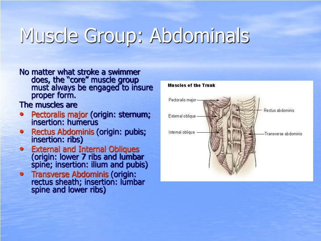 Muscle Group: Abdominals