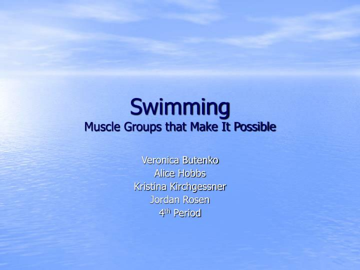 Swimming muscle groups that make it possible