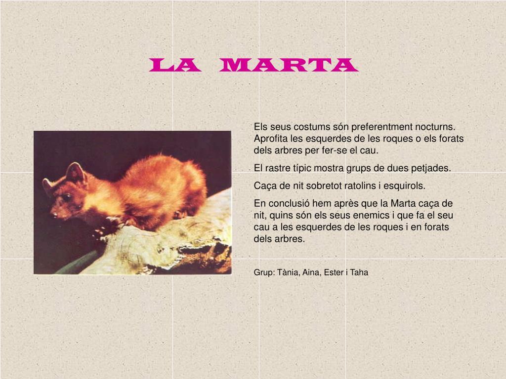 LA   MARTA