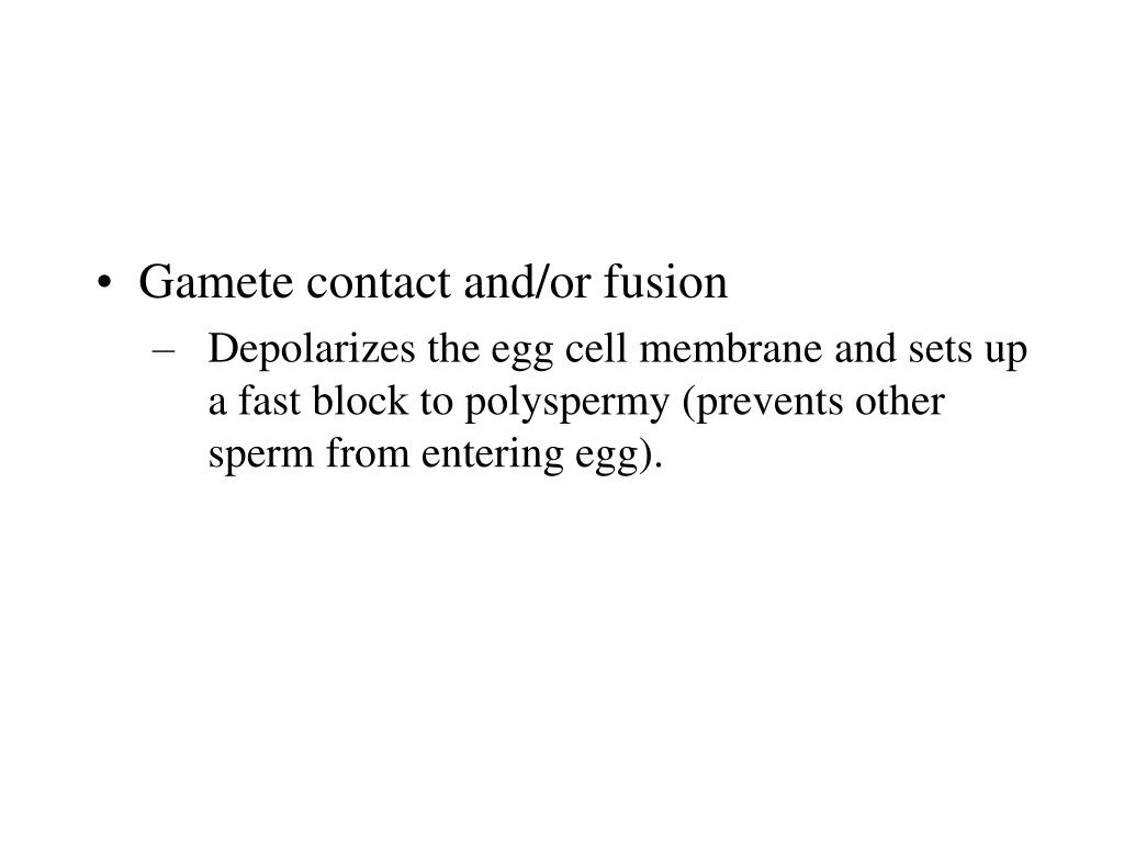 Gamete contact and/or fusion