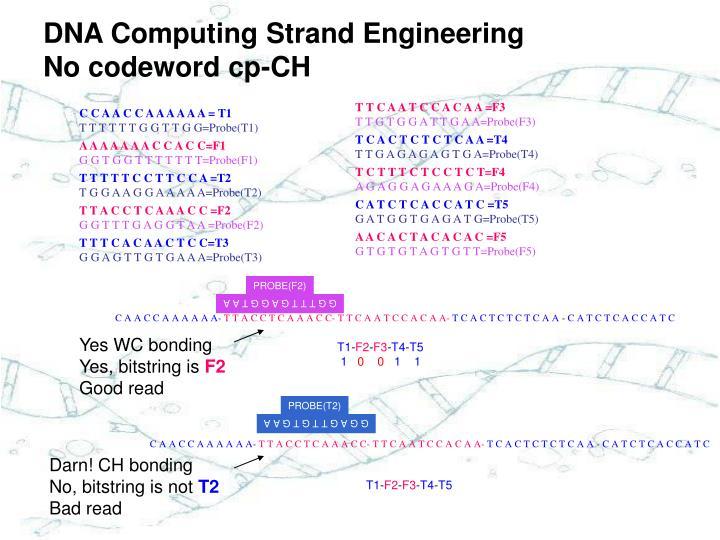 DNA Computing Strand Engineering