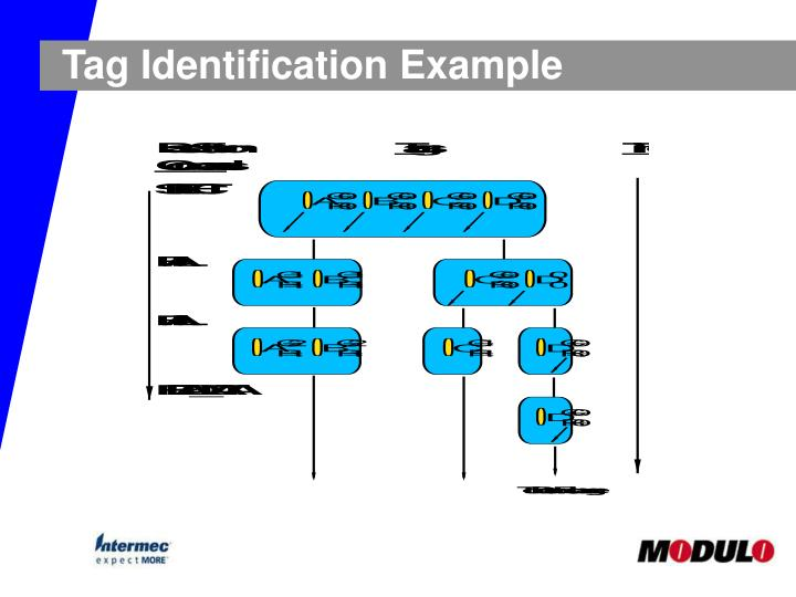 Tag Identification Example