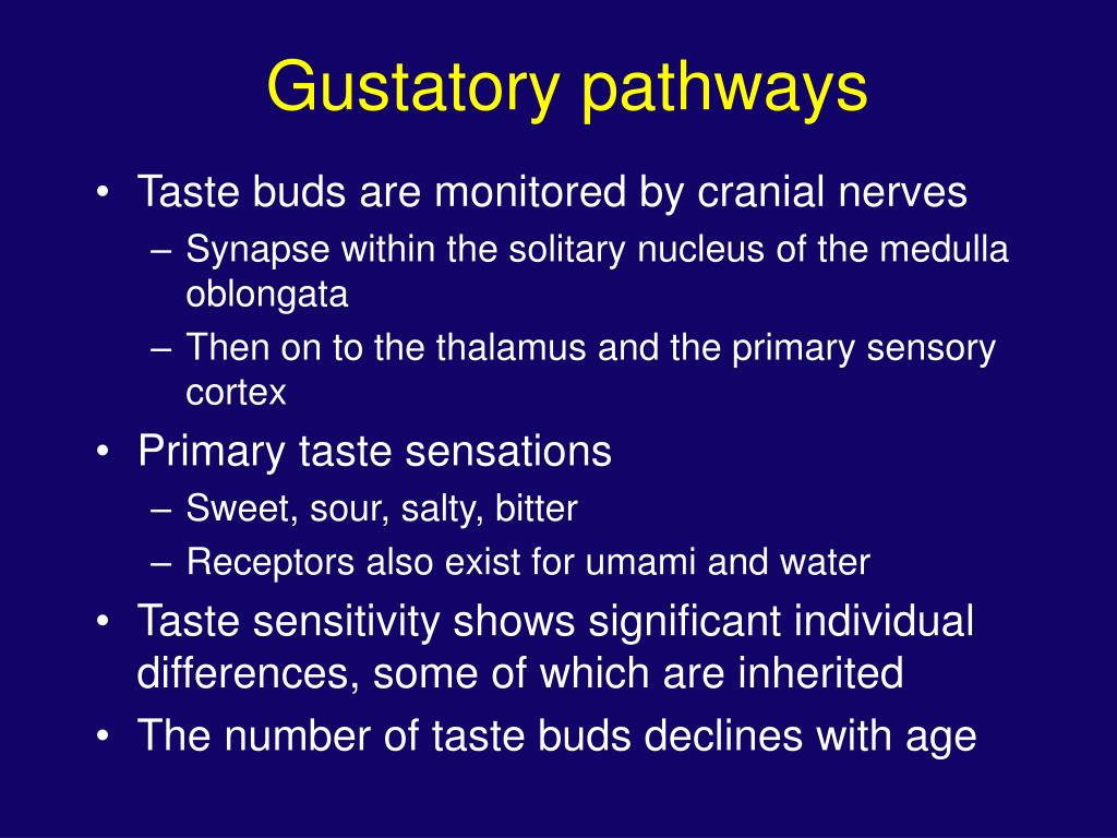 Gustatory pathways