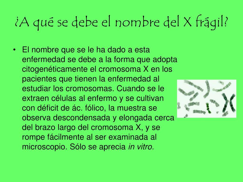 ¿A qué se debe el nombre del X frágil?
