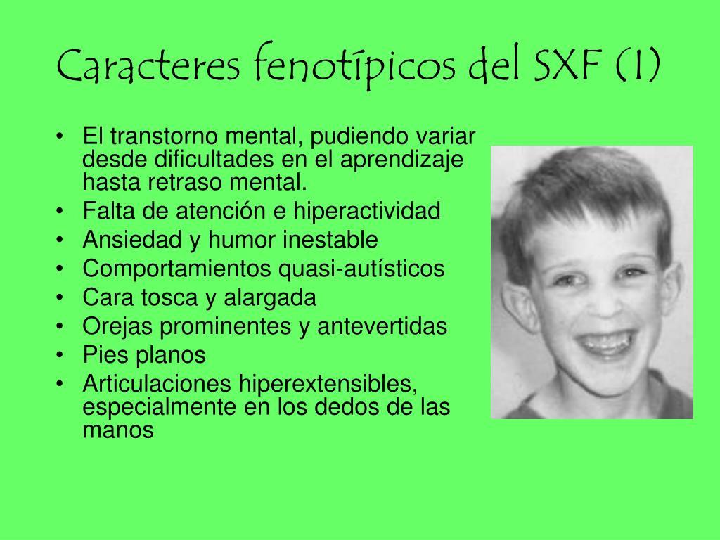 Caracteres fenotípicos del SXF (I)