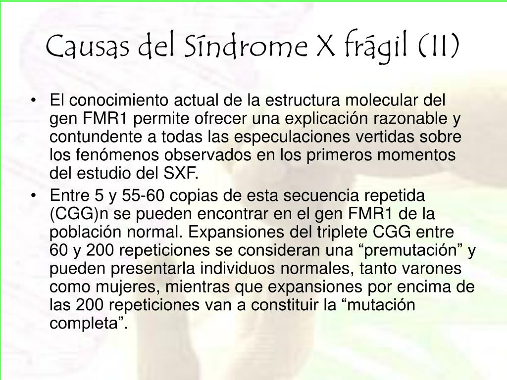 Causas del Síndrome X frágil (II)
