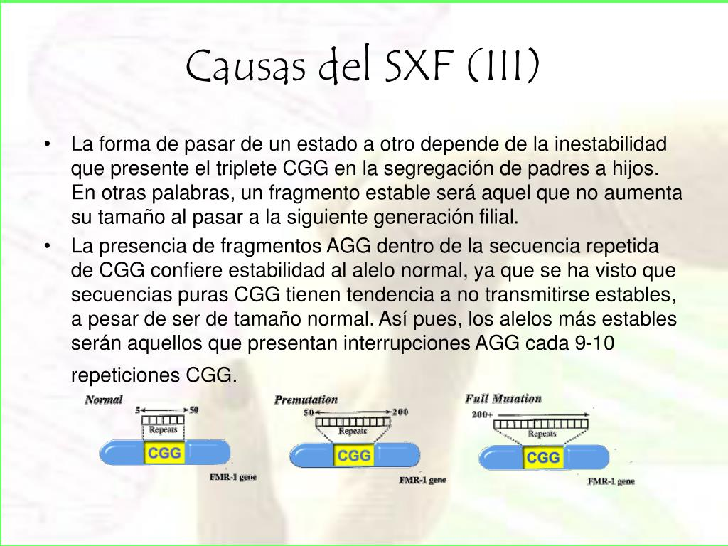 Causas del SXF (III)