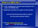 what is a mex file