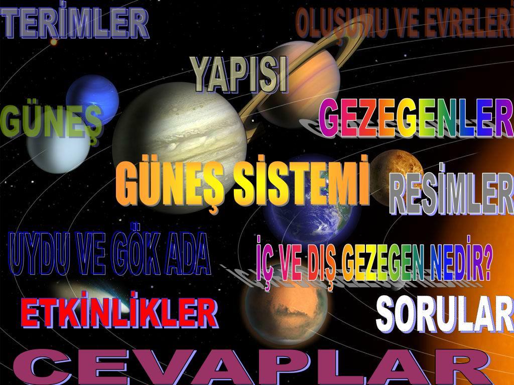 TERİMLER