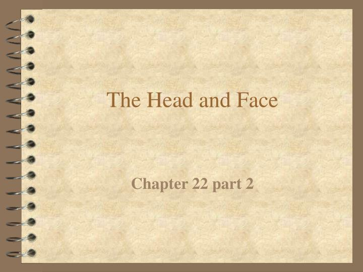 The head and face l.jpg