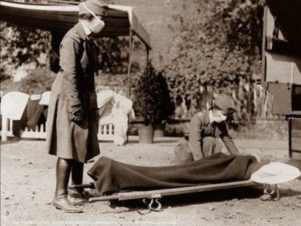 http://4.bp.blogspot.com/_473nrD5vEv8/R9Z1nmU94xI/AAAAAAAAAVc/1TZEry9zRO0/s400/flu-pandemic.jpg