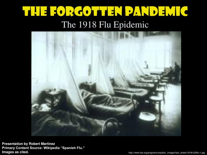 The forgotten pandemic the 1918 flu epidemic l.jpg