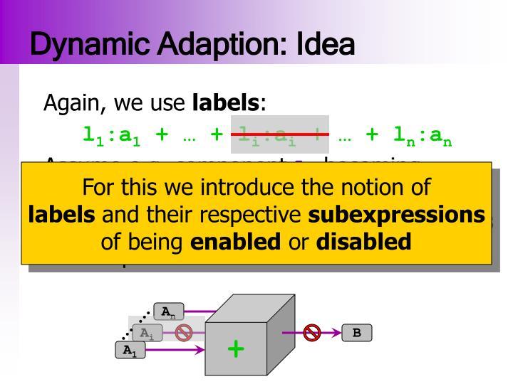 Dynamic Adaption: Idea